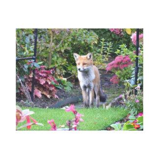 Fox氏 キャンバスプリント