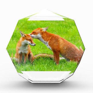 Fox Cares For Herママの赤ん坊 表彰盾