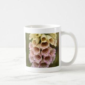 Foxcloveの共通の花(ジギタリスのpurpurea) コーヒーマグカップ
