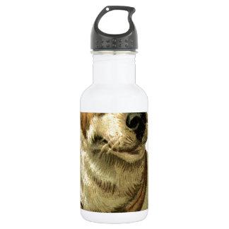 foxhound動物ペット顔の目はヴィンテージ睡眠のうたた寝します ウォーターボトル