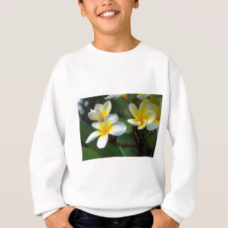 Frangipani_flowers.jpg スウェットシャツ
