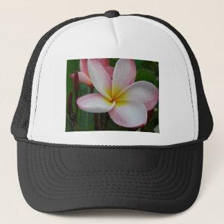 frangipanis sandi鍛冶屋 キャップ