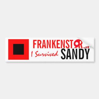 Frankenstormサンディのハリケーンのバンパーステッカー バンパーステッカー