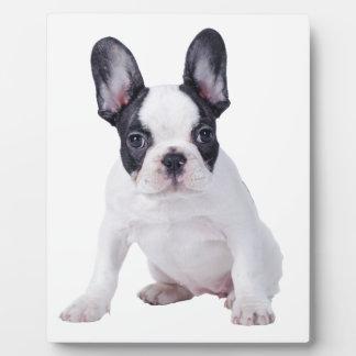 Frenchie -フレンチ・ブルドッグの子犬 フォトプラーク