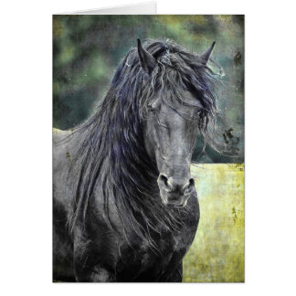 Friesianの種馬 カード