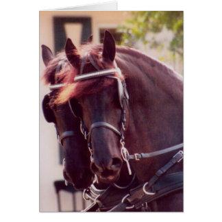 Friesianの馬車馬カード カード