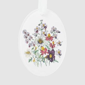 Fringeflowersおよびビロードのトランペット花 オーナメント