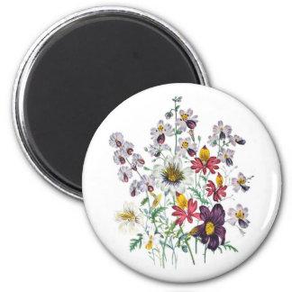 Fringeflowersおよびビロードのトランペット花 マグネット