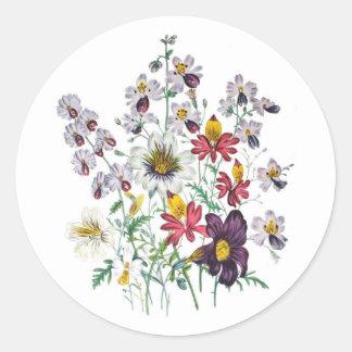 Fringeflowersおよびビロードのトランペット花 ラウンドシール