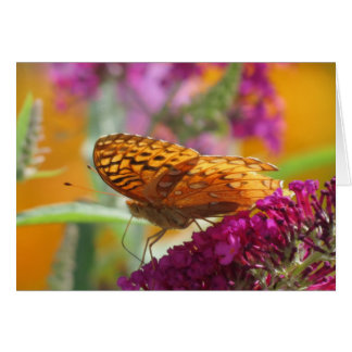 Fritillary色-蝶 グリーティングカード
