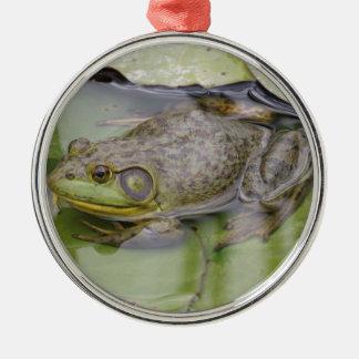 Froggy メタルオーナメント