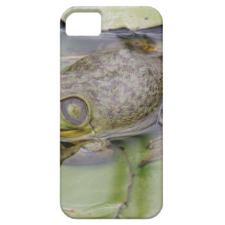 Froggy iPhone SE/5/5s ケース