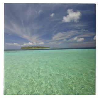 Funadovilligilli 2からのFunadooの島の眺め タイル