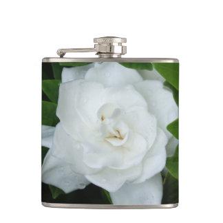 Gardeniaのフラスコ フラスク