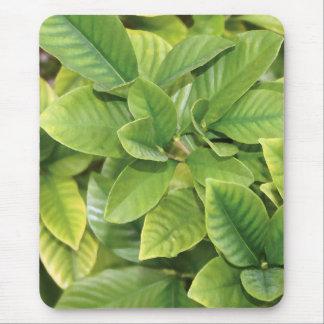 Gardeniaの緑 マウスパッド