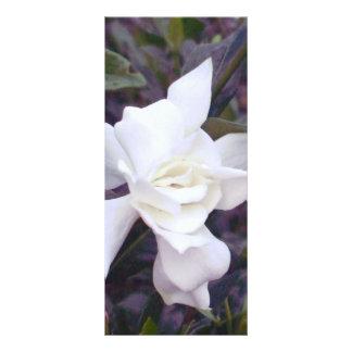 Gardeniaの色合い ラックカード