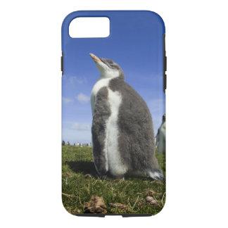 Gentooのペンギン、曖昧のPygoscelisパプア、 iPhone 8/7ケース