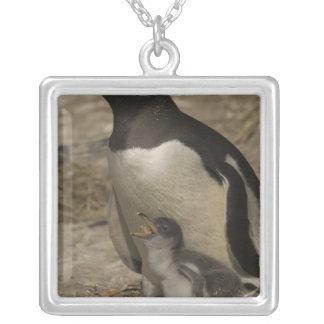 Gentooのペンギン(Pygoscelisパプア)およびひよこ シルバープレートネックレス