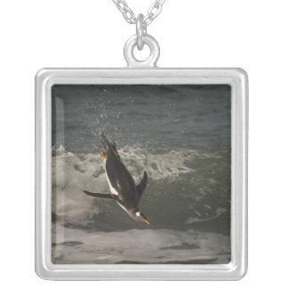Gentooのペンギン(Pygoscelisパプア)のアシカ シルバープレートネックレス