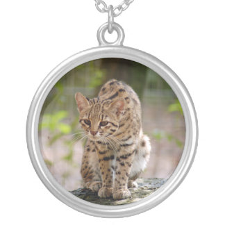 geoffroy猫021 シルバープレートネックレス