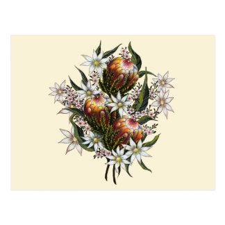 Geraldtonのワックス、フランネルの花、バンクシア ポストカード