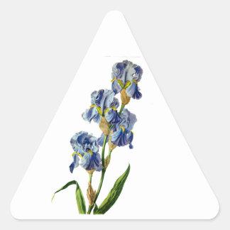 Gerard van Spaendonが自然から描く青いアイリス 三角形シール