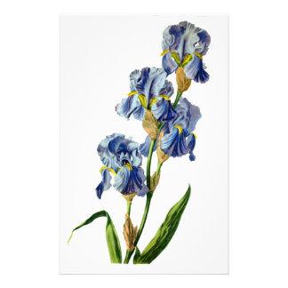 Gerard van Spaendonが自然から描く青いアイリス 便箋