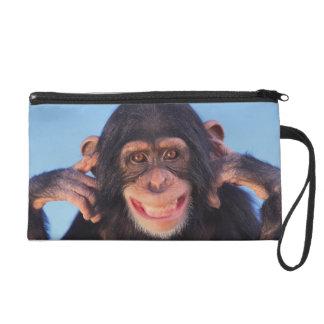 Gettyのイメージ|の微笑のチンパンジー リストレット