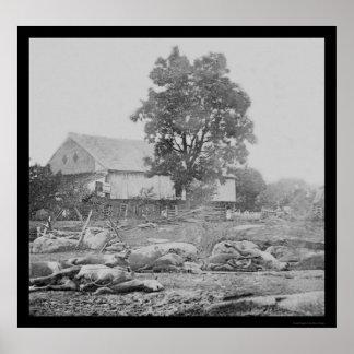 Gettysburg 1863年の納屋周囲の庭そして馬 ポスター