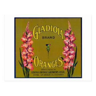 Gladiolaのブランドの柑橘類の木枠のラベル ポストカード