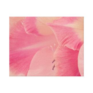 Gladiolaの花びら キャンバスプリント