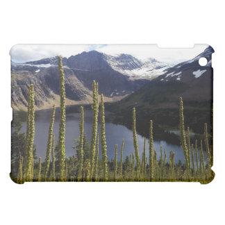 Glaicerのpark隠された湖 iPad Mini Case