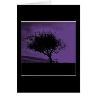 Glastonburyのホーソーン。 丘の木。 バイオレット、黒 カード