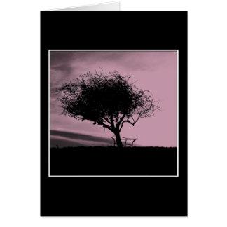 Glastonburyのホーソーン。 丘の木。 ピンク、黒 カード