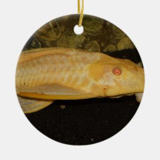 Glyptoperichthysのgibbiceps セラミックオーナメント