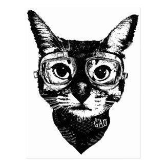 Goggles Cat はがき