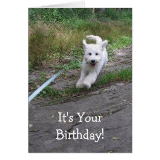Goldendoodleのかわいい連続した子犬との誕生日のユーモア カード