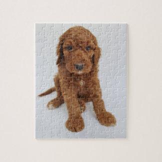 Goldendoodleの子犬のジグソーパズル ジグソーパズル