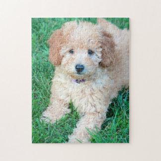 Goldendoodleの子犬のパズル ジグソーパズル