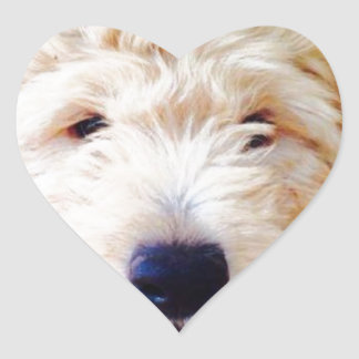 Goldendoodleの子犬 ハートシール