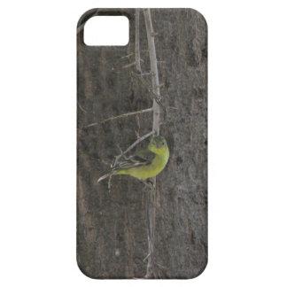GoldfinchのiPhone 5の場合 iPhone SE/5/5s ケース