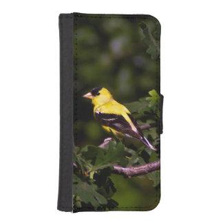GoldfinchのiPhone 5/5Sのウォレットケース iPhoneSE/5/5sウォレットケース