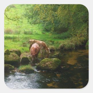 Golitha川Foweyコーンウォールイギリスの牛は落ちます スクエアシール