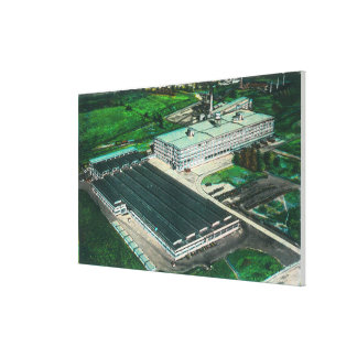 Goodyearツェッペリン型飛行船の製作の空中写真 キャンバスプリント