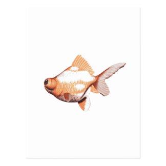 Googleは金ゴールドの魚2を注目しました ポストカード