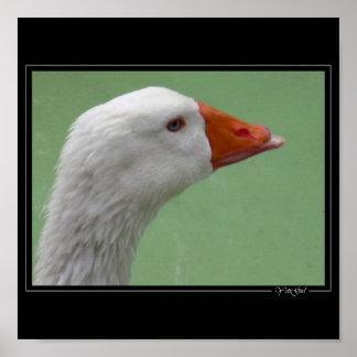 goose1 ポスター