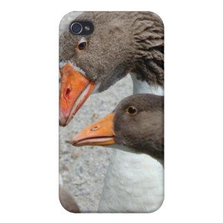 Goosey Goosey iPhoneの場合 iPhone 4/4S ケース