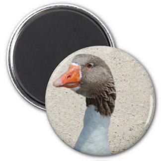 Goosyガチョウの磁石 マグネット