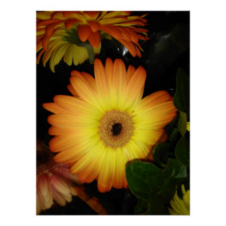 Gorgeous Yellow Gerbera Daisy Close-up ポスター