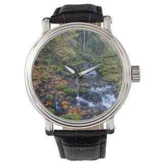 Gortonの入り江に沿って分散する紅葉 腕時計